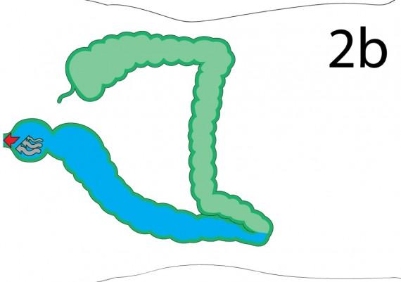 Fig.6B